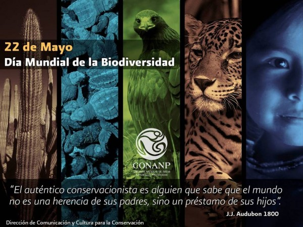 Imágenes del Día Mundial de la Biodiversidad Biológica para descargar gratis