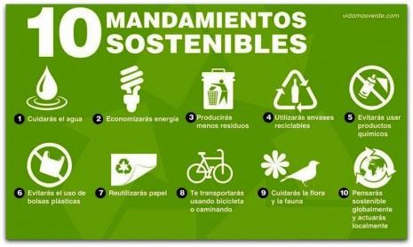 Consejos para cuidar el Medio Ambiente | Frases Hoy