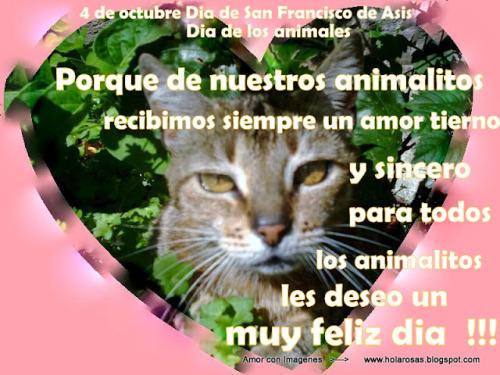 Imágenes Con Frases Del Día Mundial De Los Animales Para