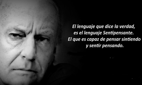 Eduardo Galeano frases  (1)