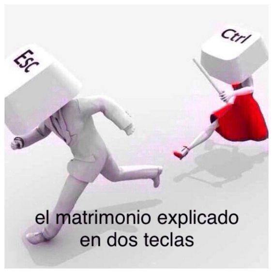 amor 56