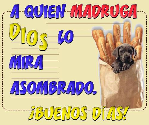 Imágenes graciosas de Buenos Días para compartir en Facebook
