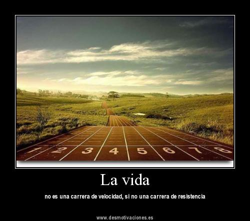 motivadora31