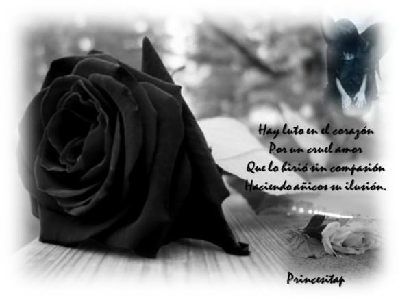 rosa negra de luto (1)