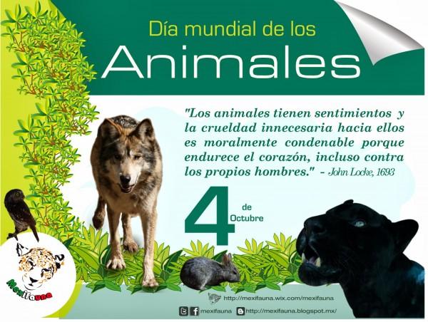 animalesfrases3