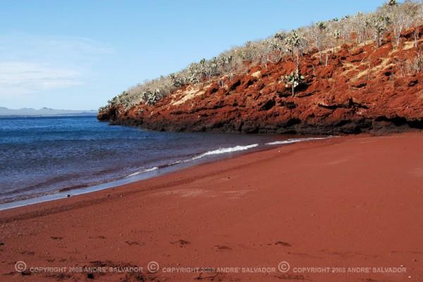 paisaje galapagos arena roja.jpg rábida