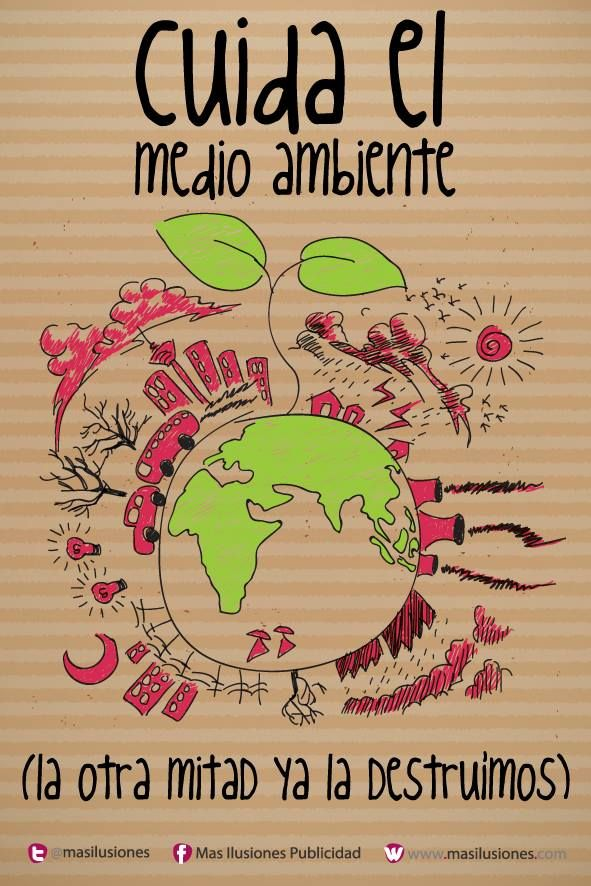 Día del Medio ambiente Frases y mensajes  (14)
