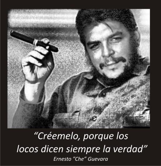 Frases del Che guevara  (17)