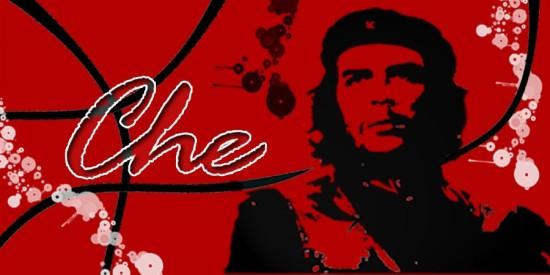 Frases del Che guevara  (7)