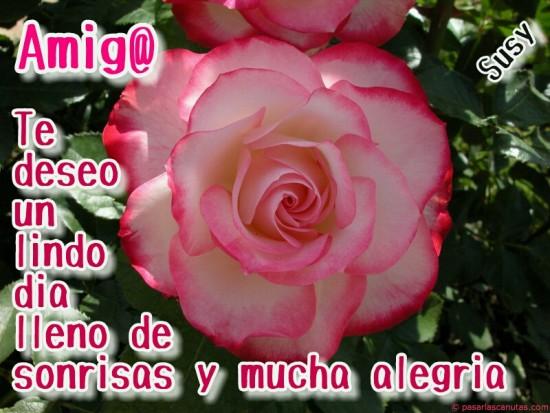 Imagenes De Flores Hermosas Con Frases De Amor