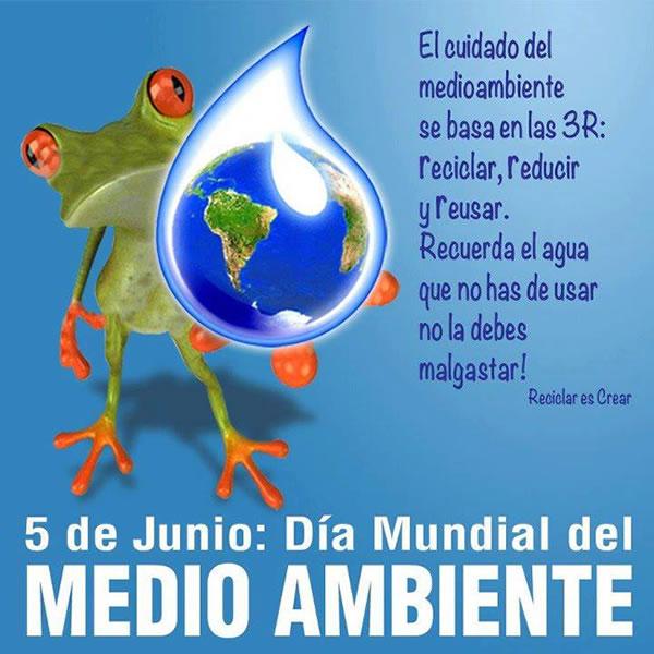 carteles Dia del Medio Ambiente  (10)