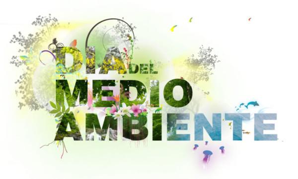 carteles Dia del Medio Ambiente  (13)