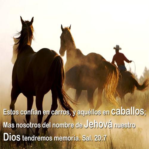 frases Cristianas  (47)
