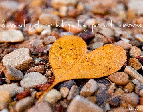 frases de Amor que enamoran para dedicar (23)