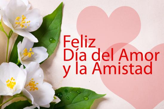 Imagenes Bonitas Con Flores Y Frases De Amistad Para Compartir