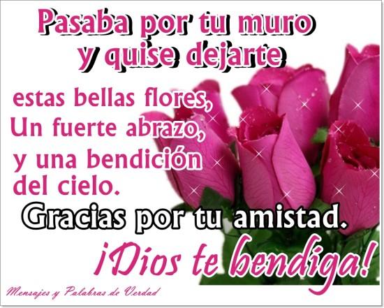 im u00e1genes bonitas con flores y frases de amistad para