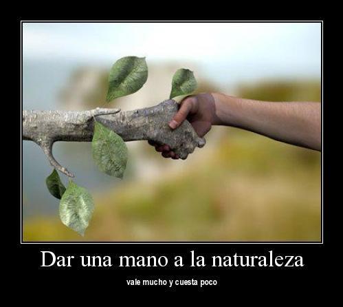 medioambiente1