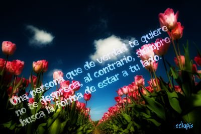 mensajes de Amor frases tiernas (20)