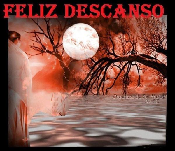 Buenas Noches - dulces sueños - Feliz Noche  (33)