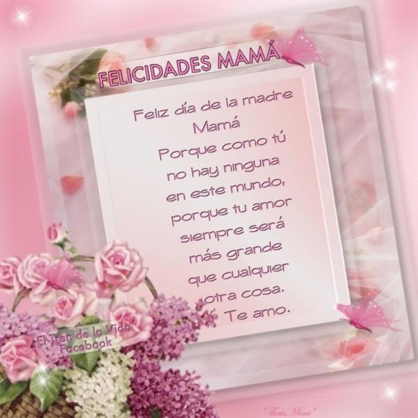 Feliz dia de la Madre  (4)