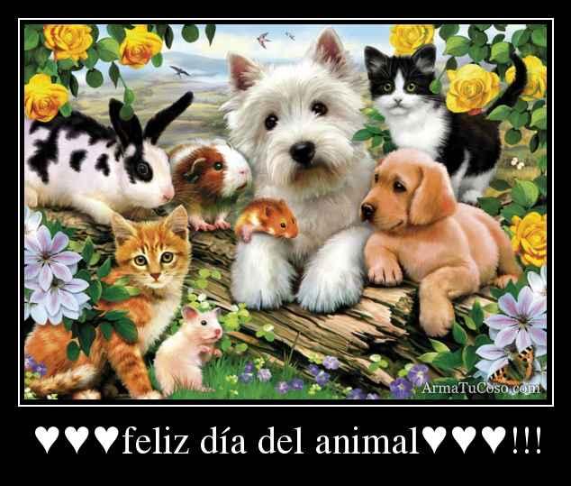 Frases Día del Animal  (8)