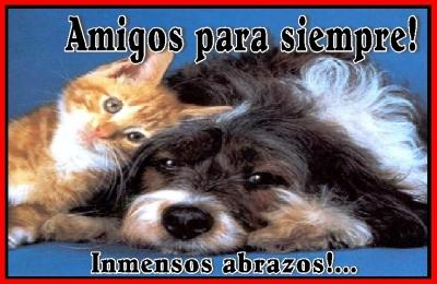 Frases Dia de la amistad imágenes  para compartir  (1)