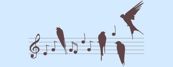 Imágenes, frases y mensajes Día de la Musica  (17)