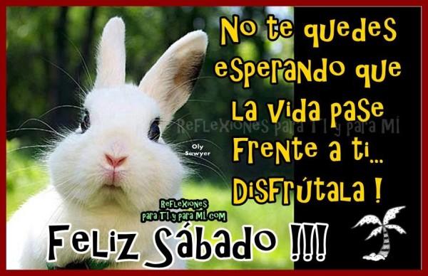 Imagenes-Feliz-Sabado_16