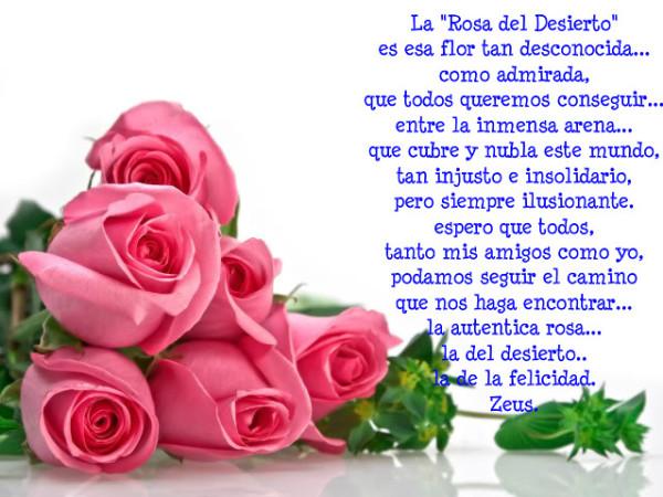 Lindas Flores de Felíz Día de la Mujer con Mensajes (2)
