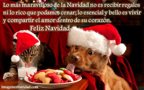 imagenes, postales y tarjetas con frases de Navidad (29)