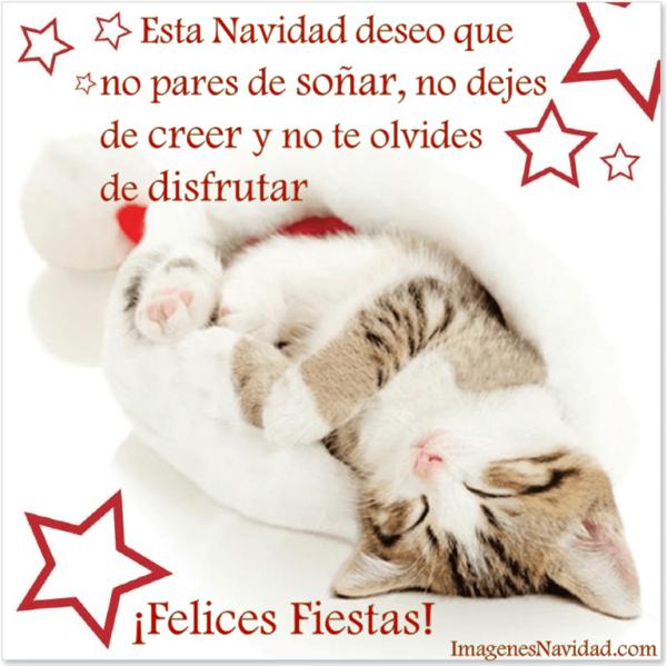 imagenes, postales y tarjetas con frases de Navidad (9)