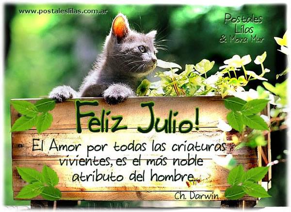 bienvenido mes de Julio  (1)