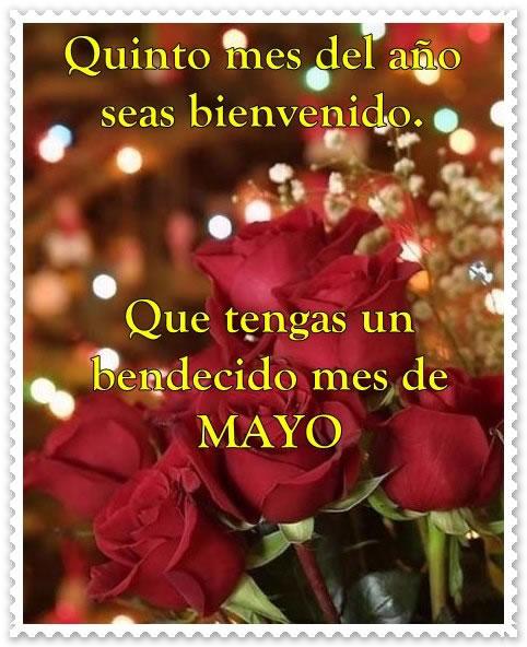may 11