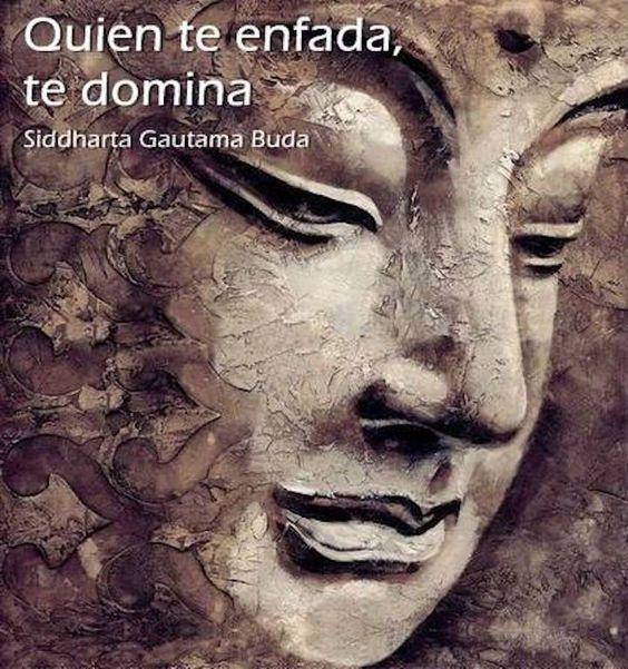Frases De Buda Sobre El Amor De Pareja Klewer Q