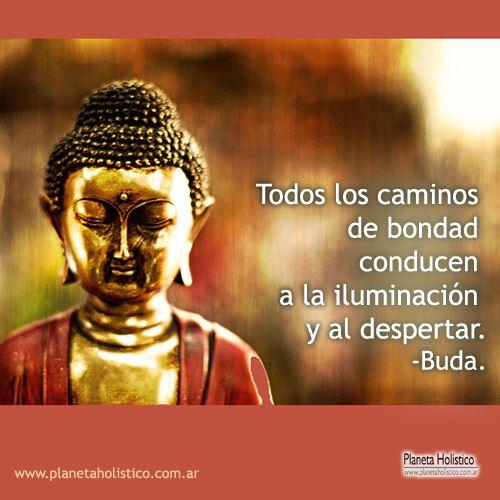 Imagenes Con Frases De Buda Para Pensar Y Reflexionar Fraseshoy Org