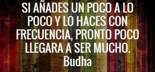 50 frases de Buda para compartir y reflexionar
