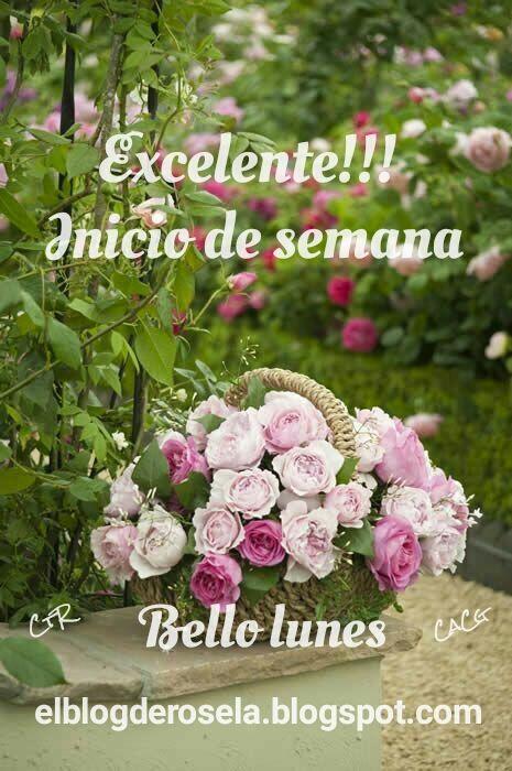 Imagenes De Feliz Comienzo De Semana Con Frases Optimistas