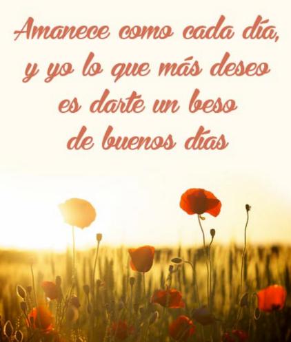 Imagenes De Buenos Dias Mi Amor Para Celular 1 Frases Hoy