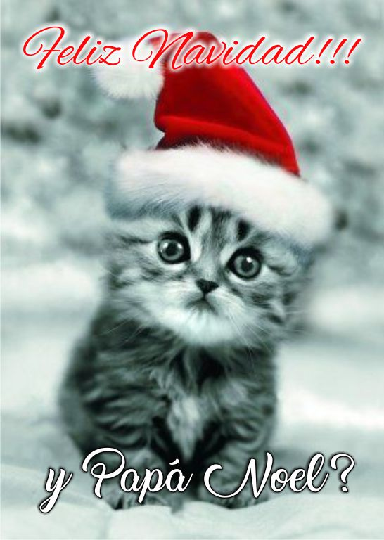 Imagenes Chistosas De Navidad Para Whatsapp Frases Hoy