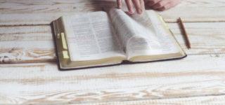 50 Mejores Refranes del mes de Enero