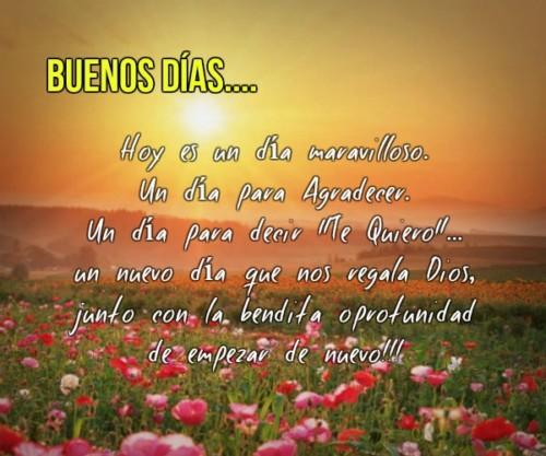 Mensajes Y Frases De Buenos Dias Mi Amor Bonitas Qué